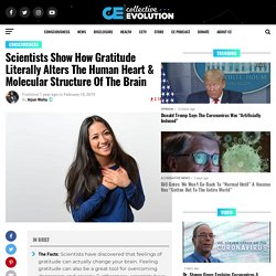 Scientists Show How Gratitude Literally Alters The Human Heart & Molecular Structure Of The Brain