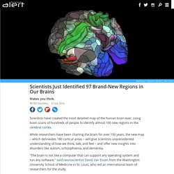 Scientists just identified 97 brand-new regions in our brains