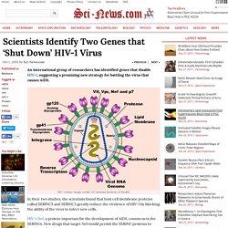 Scientists Identify Two Genes that 'Shut Down' HIV-1 Virus