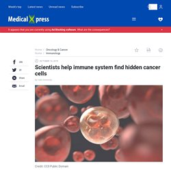 Scientists help immune system find hidden cancer cells