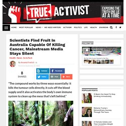 Scientists Find Fruit In Australia Capable Of Killing Cancer, Mainstream Media Stays Silent