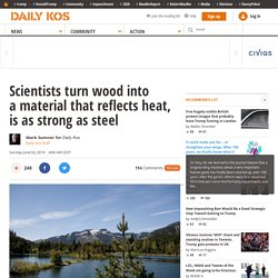 Scientists turn wood into a material that reflects heat, is as strong as steel