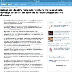 Scientists identify molecular system that could help develop potential treatments for neurodegenerative diseases