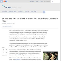 Scientists Put A 'Sixth Sense' For Numbers On Brain Map