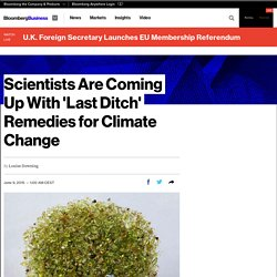Scientists Are Coming Up With 'Last Ditch' Remedies for Climate Change