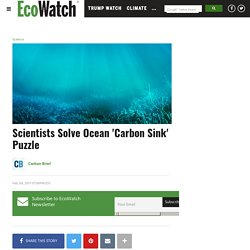 Scientists Solve Ocean 'Carbon Sink' Puzzle