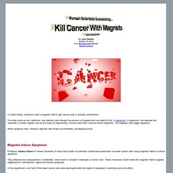 Korean Scientists Successfully Kill Cancer With Magnets - Soon Censored?