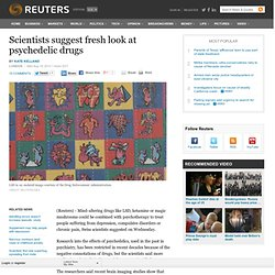 Scientists suggest fresh look at psychedelic drugs | Reuters (Build 20100722155716)