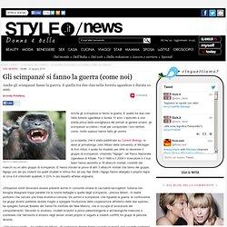 Gli scimpanzé fanno la guerra (come gli umani)