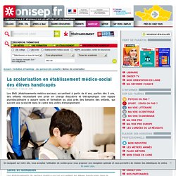 La scolarisation en établissement médico-social des élèves handicapés
