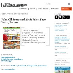 Palm Oil Scorecard 2015: Fries, Face Wash, Forests