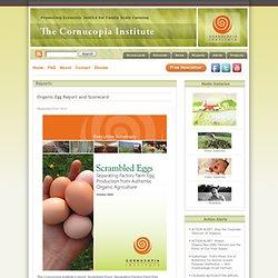 Organic Egg Report and Scorecard