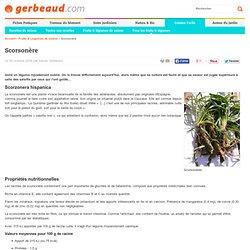 Scorsonère : un délice de légume oublié
