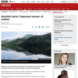 Scottish lochs 'important stores' of carbon