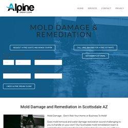 Scottsdale Mold Remediation