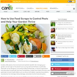 How To Use Food Scraps To Control Pests And Help Your Garden Thrive