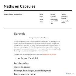 Maths en capsules