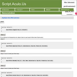 Scriptaculous : demonstration - le-developpeur-web.com