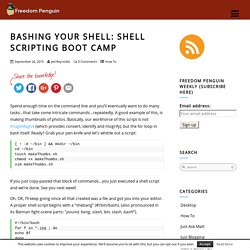 Shell Scripting Boot Camp - Freedom Penguin