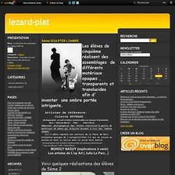 5éme:SCULPTER L'OMBRE - Le blog des arts plastiques au collège Petit Val
