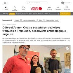 Côtes-d'Armor. Quatre sculptures gauloises trouvées à Trémuson, découverte archéologique majeure