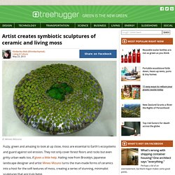 Artist creates symbiotic sculptures of ceramic and living moss