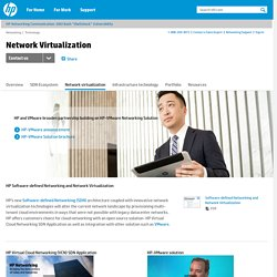 SDN Network Virtualization