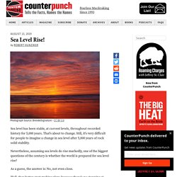 Sea Level Rise! - CounterPunch.org