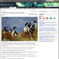 Global seabird decline greater than expected › News in Science (ABC Science)