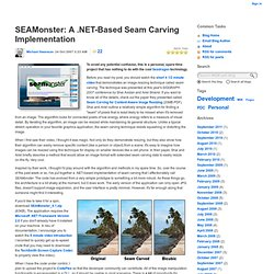 Mike Swanson's Blog : SEAMonster: A .NET-Based Seam Carving