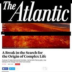 A Break in the Search for the Origin of Complex Life - The Atlantic