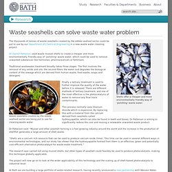 Waste seashells can solve waste water problem