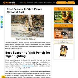 Online Safari Booking Pench