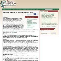 Seasonal Habits of the Largemouth Bass
