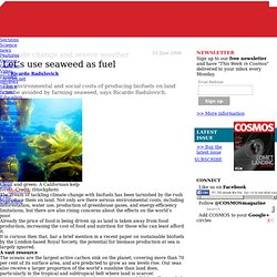 Let's use seaweed as fuel