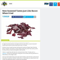 New Seaweed Tastes Just Like Bacon When Fried