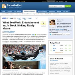 What SeaWorld Entertainment Inc.'s Stock Sinking Really Means (SEAS)