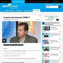 Sébastien Jean, CEPII - A quoi sert encore l'OMC ?