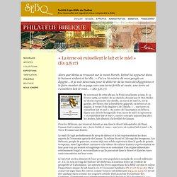 SEBQ : «La terre où ruissellent le lait et le miel» (Ex 3,8.17)