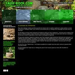 Le séchage de l'hypertufa Faux rocher et mur végétal