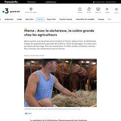 Marne : Avec la sécheresse, la colère gronde chez les agriculteurs
