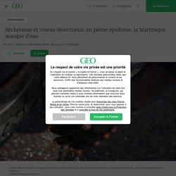 Sécheresse et réseau défectueux: en pleine épidémie, la Martinique manque d'eau...