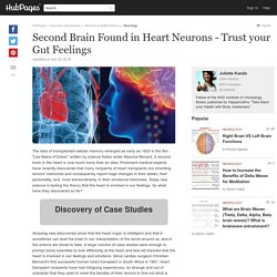 Second Brain Found in Heart Neurons - Trust your Gut Feelings
