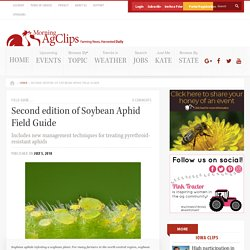 MORNING AG CLIPS 05/07/18 Second edition of Soybean Aphid Field Guide