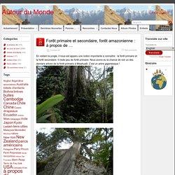 Forêt primaire et secondaire, forêt amazonienne : à propos de … – Autour du Monde