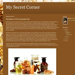My Secret Corner : The Basics of Pure Essential Oils