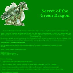 Secret of the Green Dragon