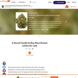 A Secret Guide to Buy Blue Dream online for sale - A Secret Guide to Buy Blue Dream online for sale