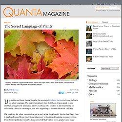The Secret Language of Plants