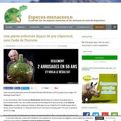 Secret de plante : 2 arrosages en 56 ans et en pleine forme !